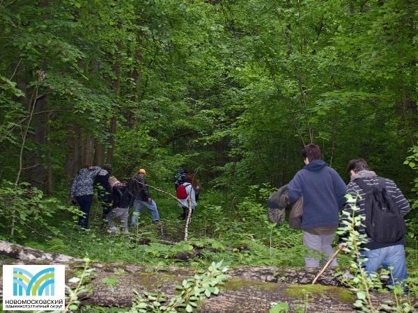 В лесу деревни Кончеево