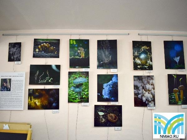 Блог-тур «В свете фар»: фотоотчет