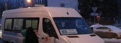 Микроавтобус 1039