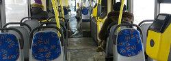 Дополнительные автобусные маршруты