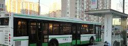 Автобус Новые Ватутинки