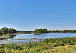 В Вороновском благоустроят пруды